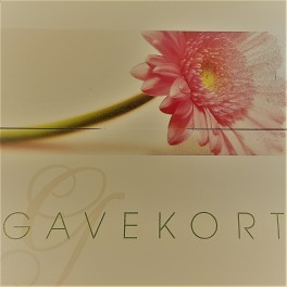Gavekort / Gift Card / Geschenkkarte 200 DKK